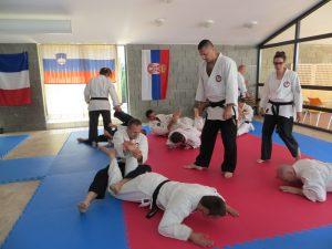 2018-Jun-ADIA Seminar Kopar12