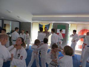 2018-Jun-ADIA Seminar Kopar21