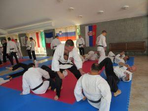 2018-Jun-ADIA Seminar Kopar6